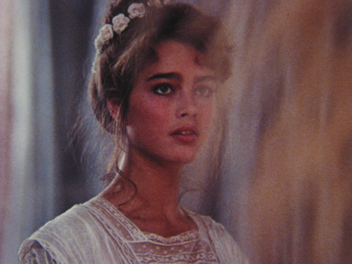 Brooke Shields Endless Love Video http://www.filmonfilm.org/events/?prog=61